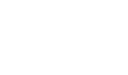 The Foley